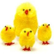 Easter Chicken Craft