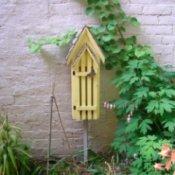 Small Walled Garden