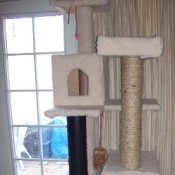 Homemade cat tree