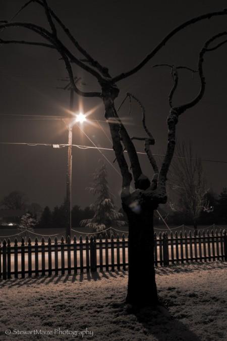 Midnight Snow in Hillsboro, OR