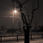 Midnight Snow in Hillsboro, OR
