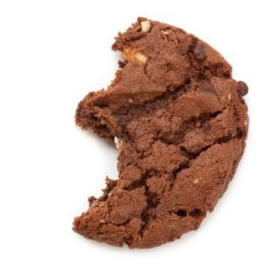 Fudge Cookie With Bite Taken Out