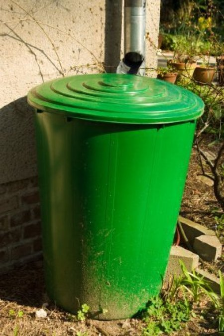 Green Rain Barrel