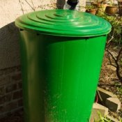Green Rain Barrel