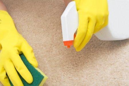 Spraying Carpet Stain