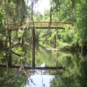 Wooden Bridge at Hillsborough River State Park (near Tampa, FL)