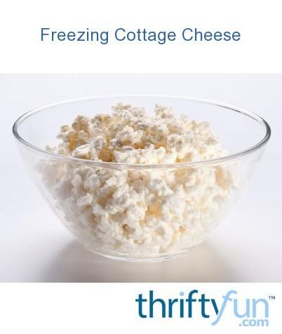 Strange Freezing Cottage Cheese Thriftyfun Download Free Architecture Designs Scobabritishbridgeorg