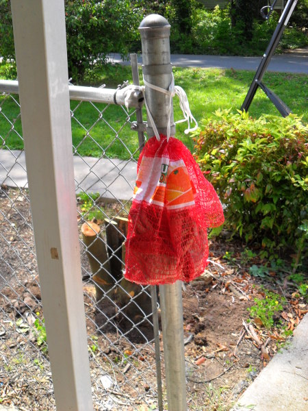 Orange bag for garden gloves.