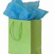 Blue Tissue Paper Sticking out of Green Gift Bag