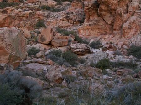 Red Rock Canyon (Las Vegas, NV)