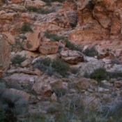 Red Rock Canyon (Las Vegas, NV)