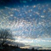 Cottage Grove Sunset