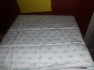 Receiving Blanket Candy 2