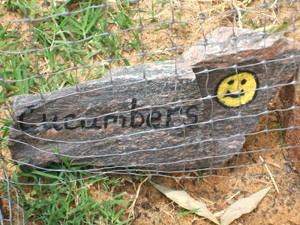 A rock painted as a garden marker.