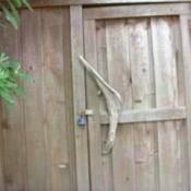 Driftwood door handle