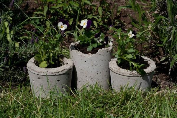Pansies in Hypertufa Pots