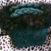 Green Felt Purse