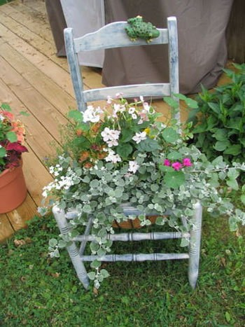 Superb A Chair Planted With Flowers