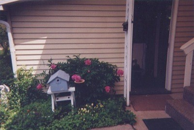 Pink peonies growing near a birdhouse next to a front door.