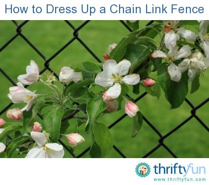how to dress up a chain link fence thriftyfun