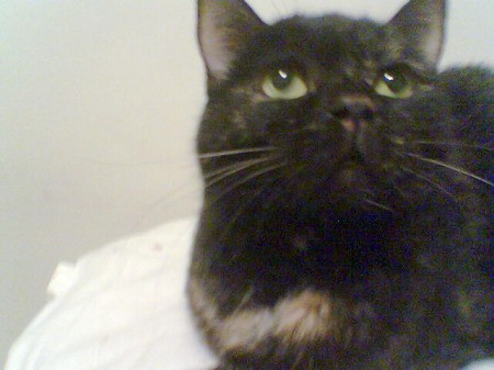 Closeup of Ruthie