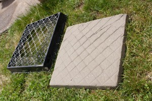 Mold and Concrete Stepping Stone