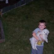 Cannoli (Bichon Frise) being held by a boy.