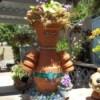 Clay Pot Gal