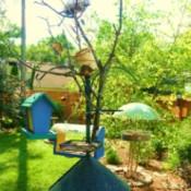 Stick sculpture for attracting birds.