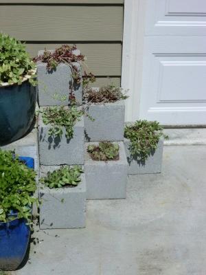 Cinder Block Step Planter - finished planter