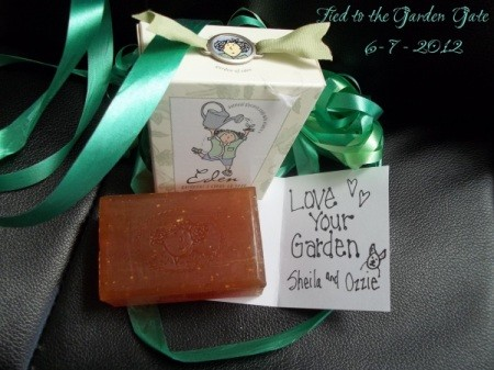 Gift bag, card, and bar of soap.