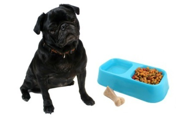When Dogs Do Not Eat Dog Food