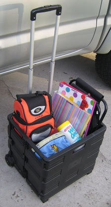 Roll around tote of pet info and supplies.