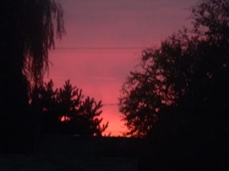 Beautiful pink and purple sunset.