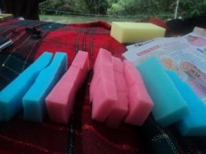 Quartered sponges.