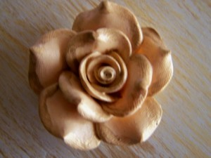 A close-up of the rose.