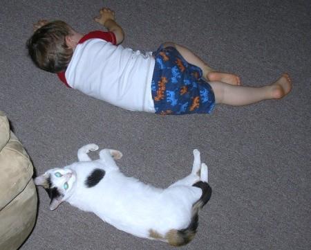 Cassie on the floor near sleeping child.
