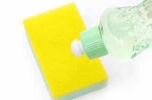 Dish Soap and Sponge