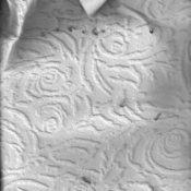 White textured wallpaper.