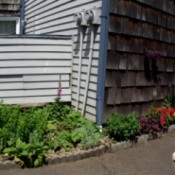 Panoramic view of house and garden.
