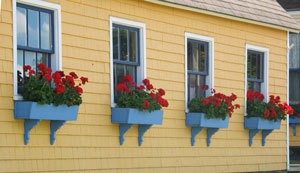 window boxes on yellow house
