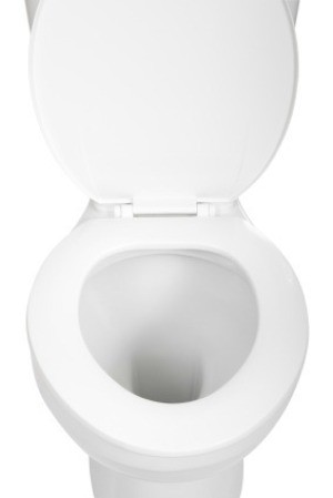 Homemade Disposable Toilet Cleaning Pads