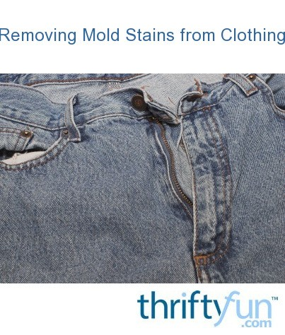 cleaning mold stains from clothing thriftyfun. Black Bedroom Furniture Sets. Home Design Ideas
