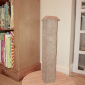 The new cat scratching post.