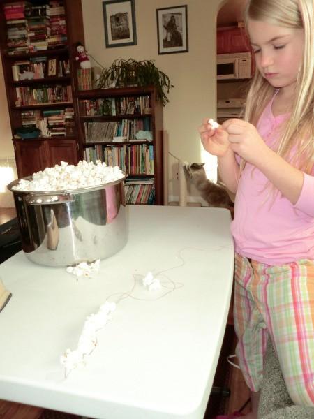 stringing popcorn 2