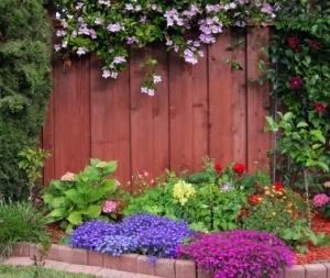 Ornamental Garden Border