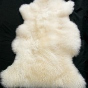 Cleaning a Sheepskin Rug