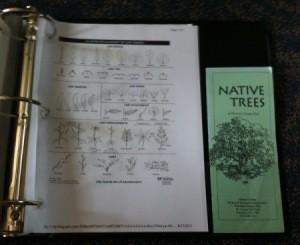 Leaf dichotomous key and flyer in binder.