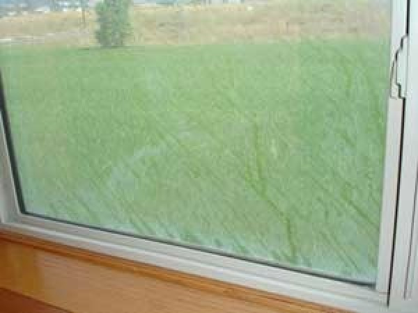 Removing Hard Water Spots On Windows