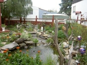 A backyard garden pond, with rockery and decorations.